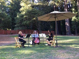 Corelli Strings 4