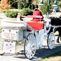 Willow Wind Carriage & Limousine Service 8