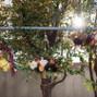 Plum Sage Flowers 20