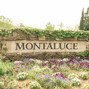 Montaluce Winery 7