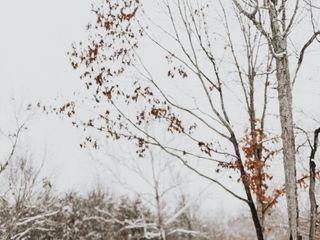 Photographs by Stephanie 6