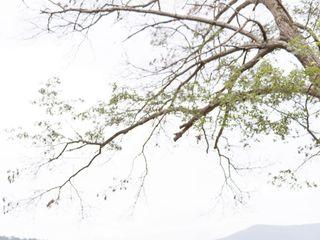 Shenandoah Woods 4