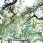 Ardenwood Historic Farm 8