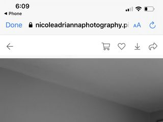 Nicole Adrianna Photography 2