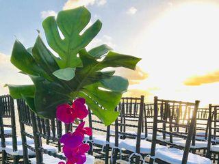Bahamas Wedding Planner 2
