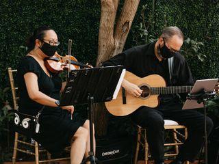Serenata Strings 1