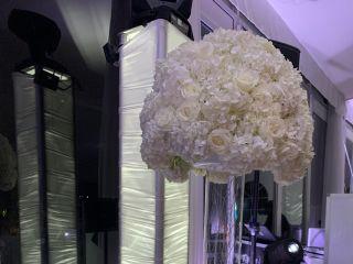 Zenplicity Studio & Florist 3