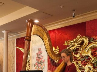Brittany Burns, Harpist 6
