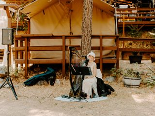 Celtic Harp Music by Anne Roos 3