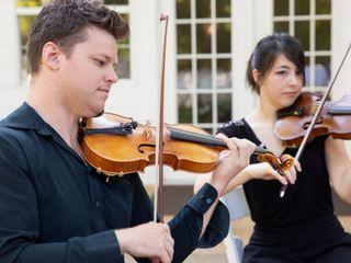 Terra Vista Strings 1