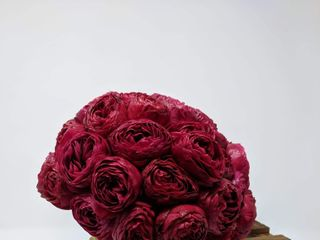 Zena Florist 1