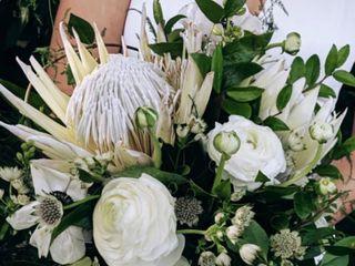 Jane Kelly Floral 1