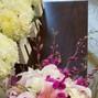 Katydid Flowers 8