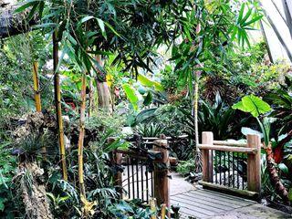 Denver Botanic Gardens and Chatfield Farms 4