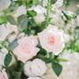 Oneco Florist 12