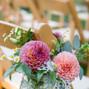 Plum Sage Flowers 22