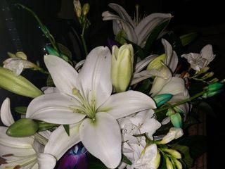 Floral Symphony 1