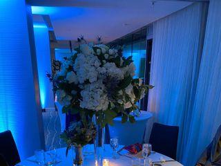 Madeleine Weddings 4