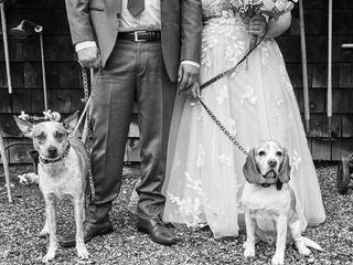 Wedding Puptials 5