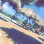 Beach Bum Vacation 14