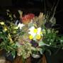 Floral Boutique 18
