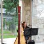 Harp Shadows 2