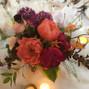 CROCUS HALE FLOWERS 7