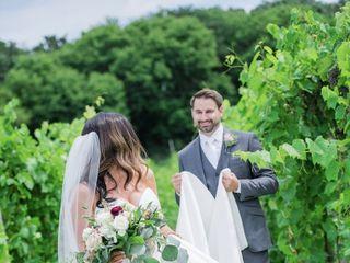 7 Vines Vineyard 5
