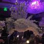 Adam Leffel Productions/Petals Premier Event Design 4