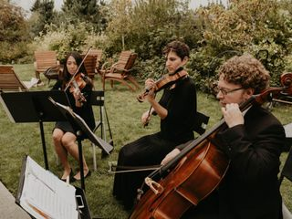 Puget Sound Strings 2