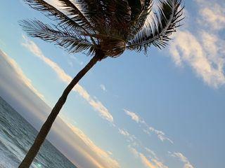 Pelican Grand Beach Resort 1
