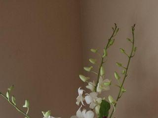 Bloomsberry Flowers 2