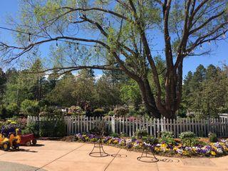 The Gardens at Viola's 3