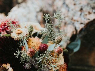 Summer Robbins Flowers 1