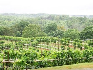 Montaluce Winery 5