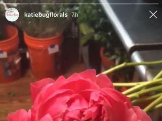 KatieBug Floral Design 2