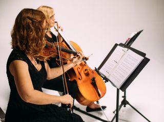 Sweetwater Strings 1