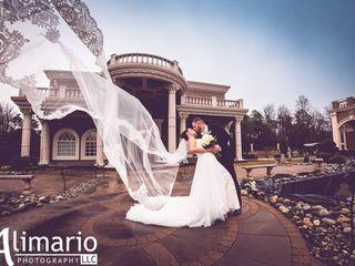 AlimarioPhoto LLC 2