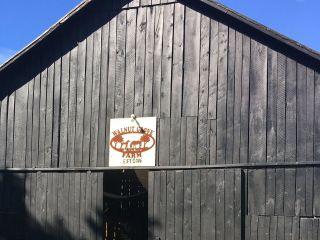 Walnut Grove Farm & Lodge 4
