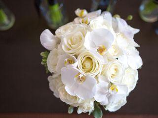 D&D Pro Imaging Wedding Photography 5