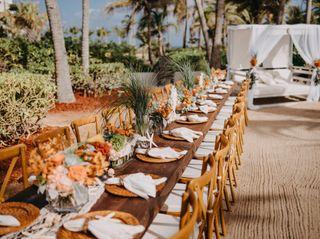 Tropical Weddings 5