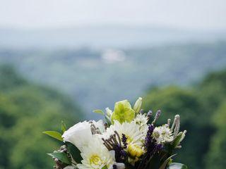 Hudson Valley Petals 2