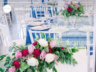 Andi Bravo Photography 1