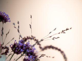 Stephanie Anestis Photography 1