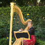 Orange County Harpist 2