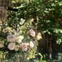 Tupelo Honey Flower Shop & Co. 14
