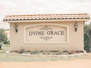 D'Vine Grace Vineyard 1