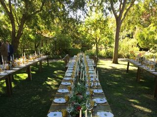 Nicki Wolfe Events + Spaces 7