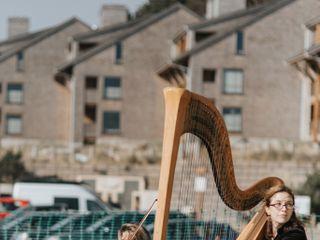 Bethany Evans, Harpist 3