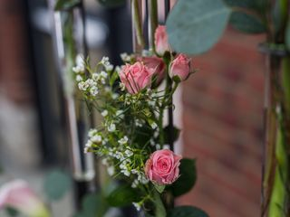 Botanica Flowers 7
